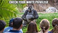 Click image for larger version.  Name:whiteprivilege speech.jpg Views:64 Size:127.7 KB ID:8403
