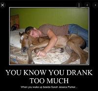 Click image for larger version.  Name:sarah jessica parker horse meme - Google Search.png Views:6 Size:342.2 KB ID:17743